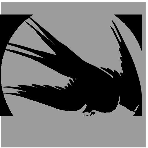 Rare Bird logo BW.png