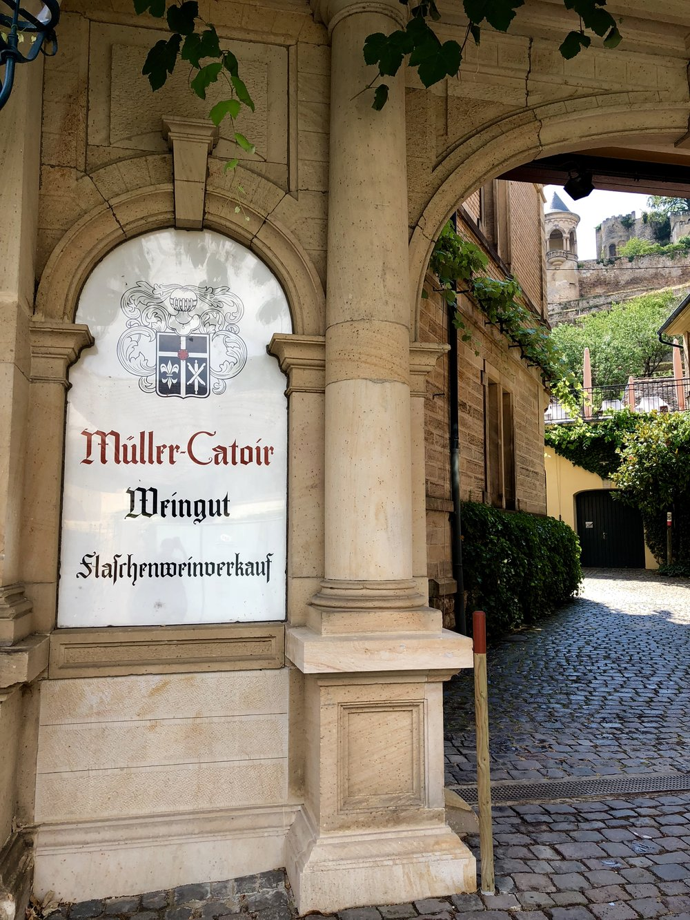 Pfalz First - Why you should think and drink the wines of this unmissable German region. August 2018