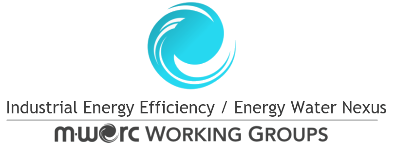 IEE - EWN Logo.png