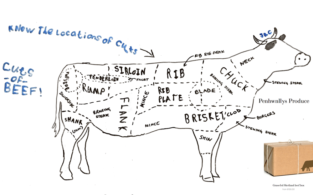 Beef+cuts+diagram cuts of beef explained penhwnllys produce