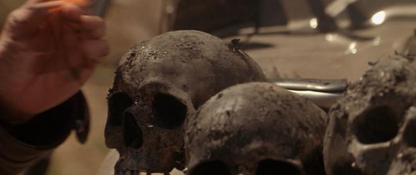 JCV (skulls).jpg