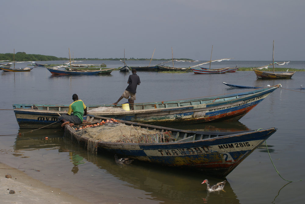 Fishing boats on Lake Victoria, Tanzania. Credit  Soaring Flamingo/Flickr  (CC BY-ND 2.0)