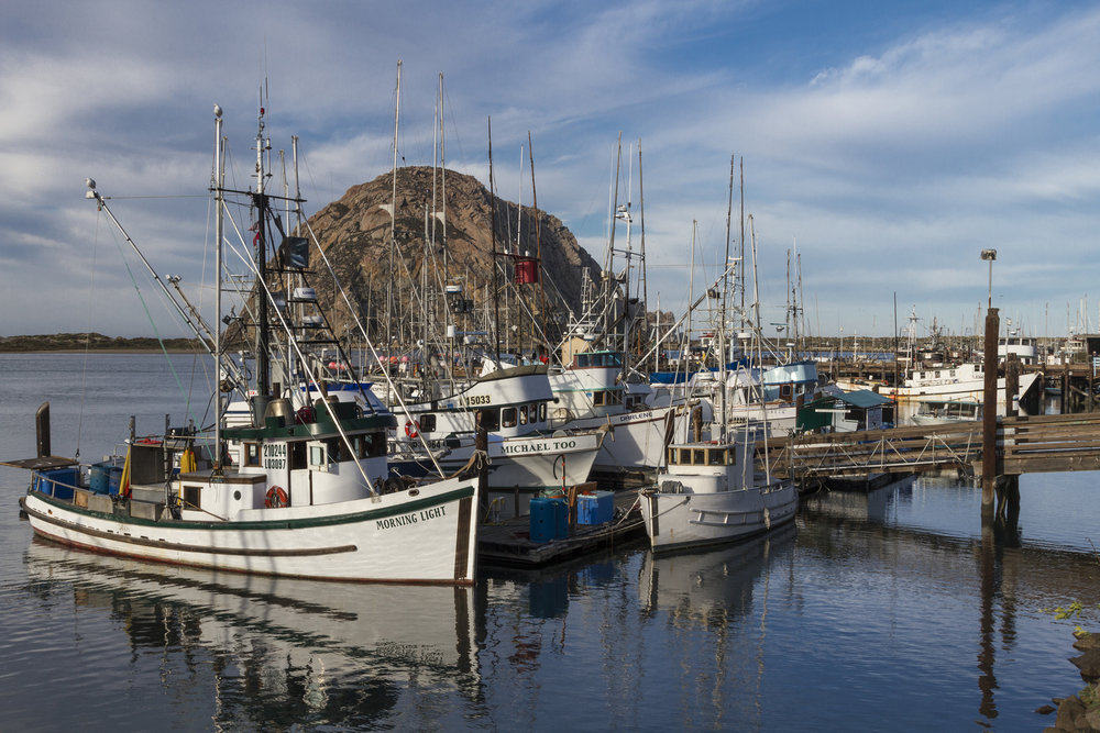 Fishing boats in Morro Bay, California, USA. Credit  Fred Moore/Flickr  (CC BY 2.0)