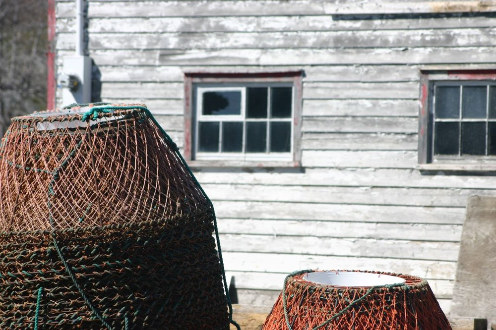 Crab pots in Newfoundland, Canada. Credit  Derek Keats/Flickr  (CC BY 2.0)