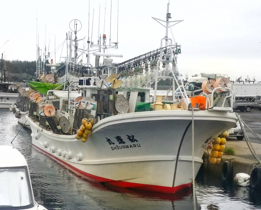 Squid fishing boat in Hakodate, Hokkaido, Japan. Credit Samantha Andrews