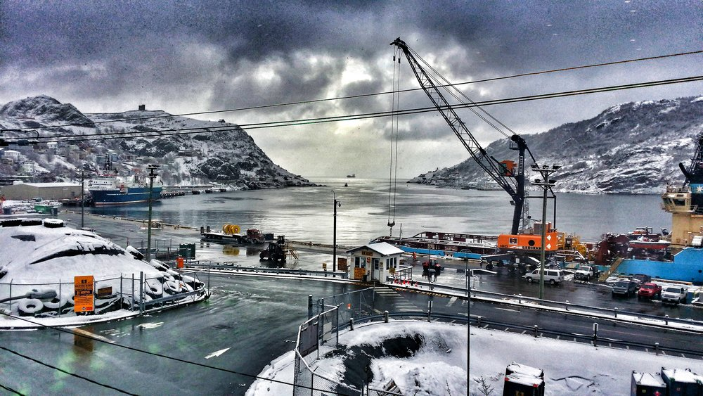 A snowy St John's harbour. Credit Samantha Andrews/Ocean Oculus