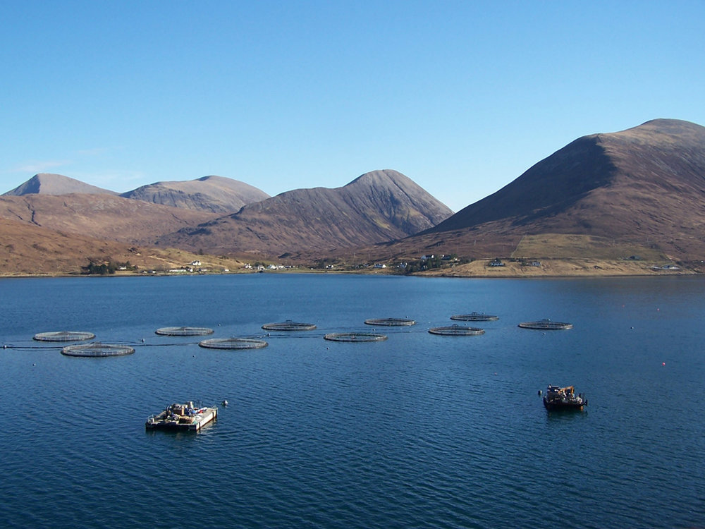 Loch Ainort fish farm  (Scotland). Credit  Richard Dorrell  ( CC BY-SA 2.0 )