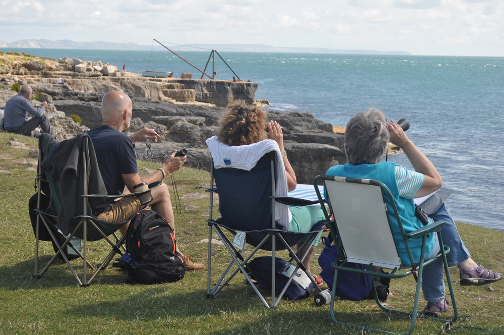 Sea spotters conducting a land watch in Dorset. Credit: Catherine de Bertrand/Sea Watch Foundation