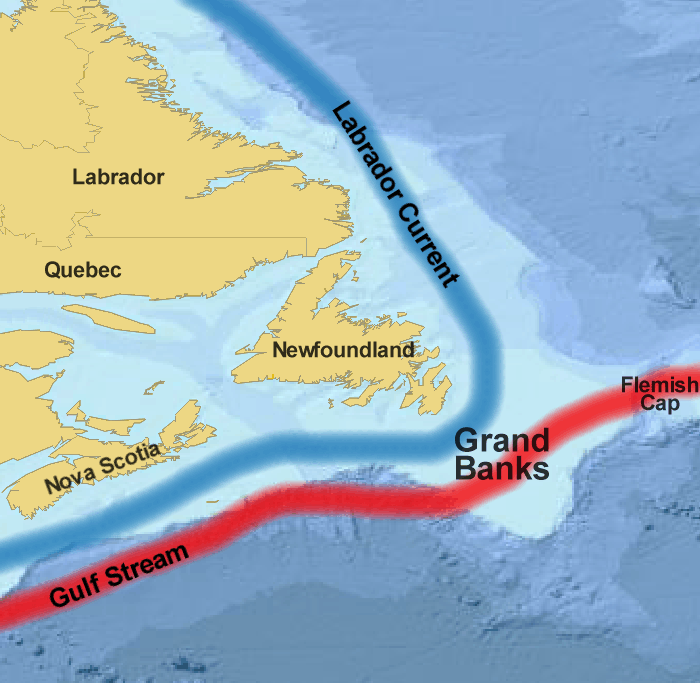 The warm Gulf Stream meets the cold Labrador Current at the Grand Banks. The result - over 200 days of fog each year! Credit:  Treeman/Wikipedia  ( CC BY 2.5 )