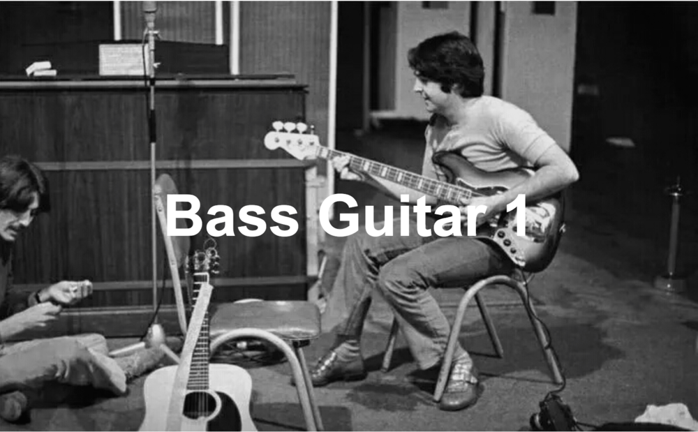 Bass Guitar Course    10 lessons – £300  This course is designed for beginners who want to learn in a fun way playing songs from an early stage of their development whilst still having an understanding of the techniques and knowledge necessary to master the instrument.  The course is always focused on making music, using real examples to illustrate a topic which means that this is a relaxed, informal and fun way to get your playing off the ground!  By the end of the 10 week course you will have learned :  . How to tune the Bass guitar (With tuner and by ear) . Notes of the guitar . Understanding Bass tab . Basic technique (Posture, picking tips, etc) . Basic 8th notes . Time keeping exercises . A 'Walking' Bass line . Basic riffs . Introduction to 'Slap Technique'  Included are 10 songs selected to help with the techniques learned by artists such as Chic, Michael Jackson, The Beatles, Parliament and Stevie Wonder.In the lessons the student will perform the songs in a duet with myself, as well as as being taught tailored practicing techniques to improve the speed of their development when not in the lesson.