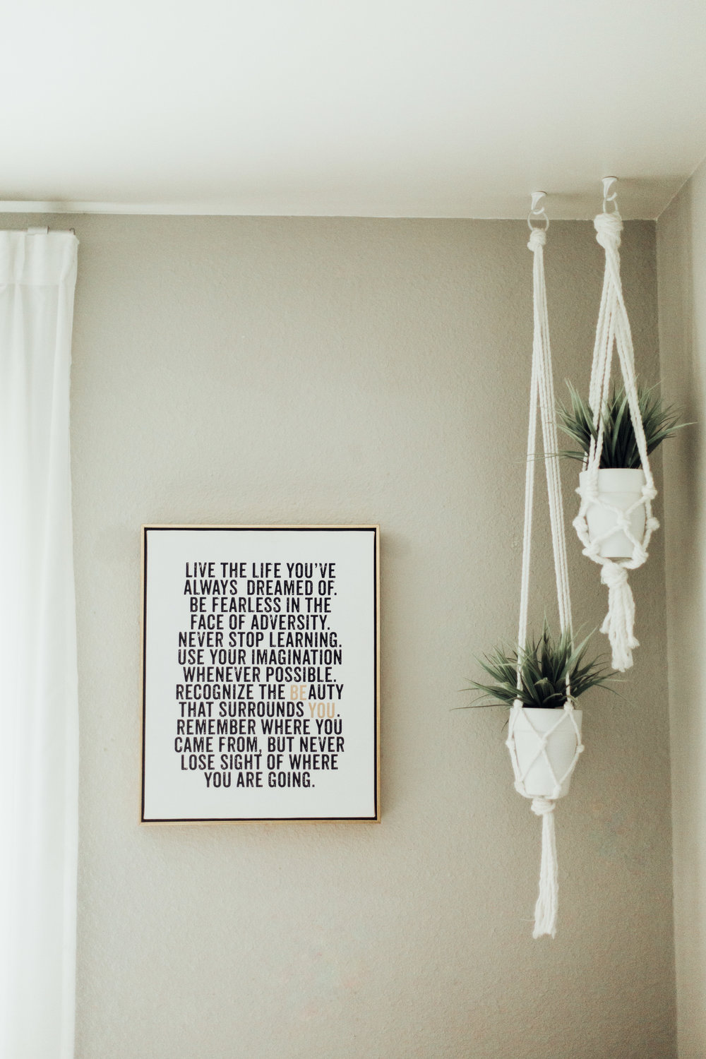 Plant Daily Reminders To Fearlessly Pursue Your Dreams Thoughts
