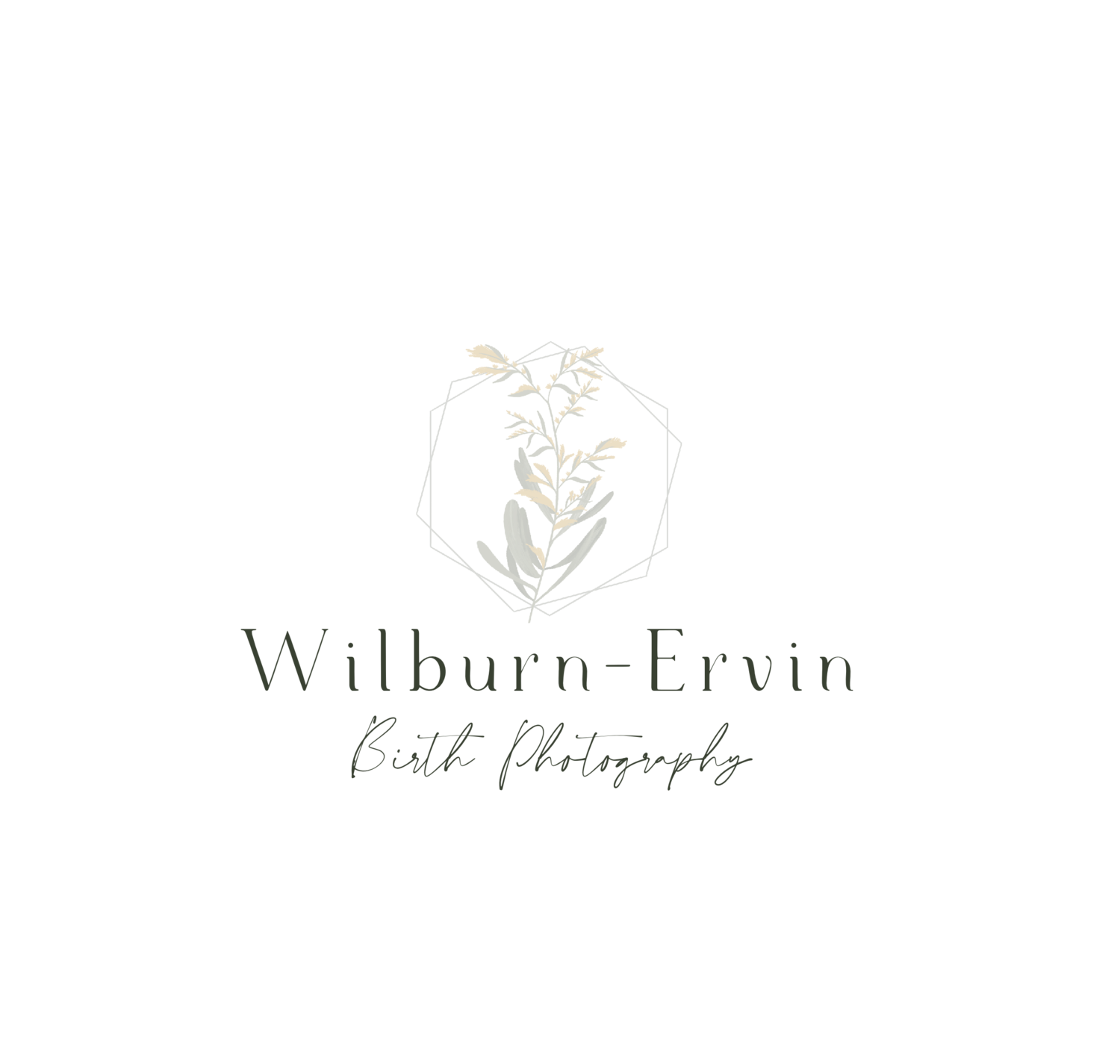 Wilburn-Ervin Birth Photography