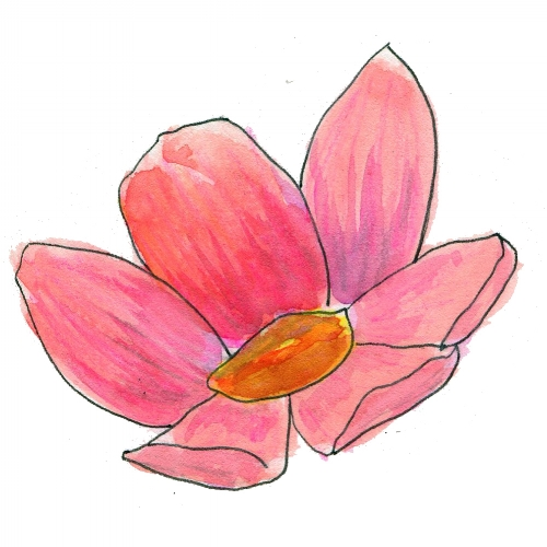 FLower for website 2.jpg