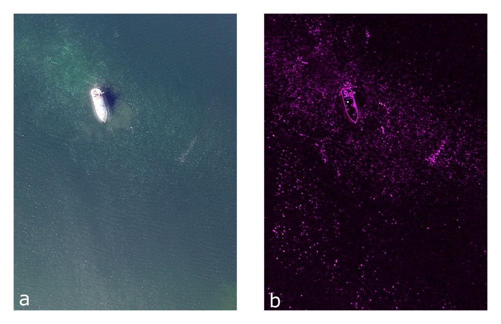 Figure 3.   An example of how well texture analysis is able to extract the jellyfish aggregations. a) raw RBG images, b) results from texture analysis on all three colors. The red dots in Figure 2b are indicative of jellyfish aggrogations.