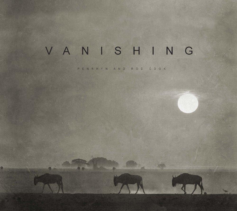 VANISHING Dust WEB.jpg