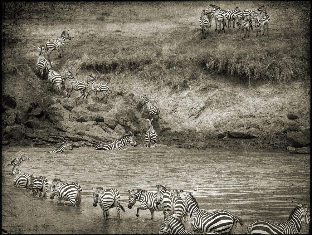 PEC_Zebra Crossing_0257 copy.jpg