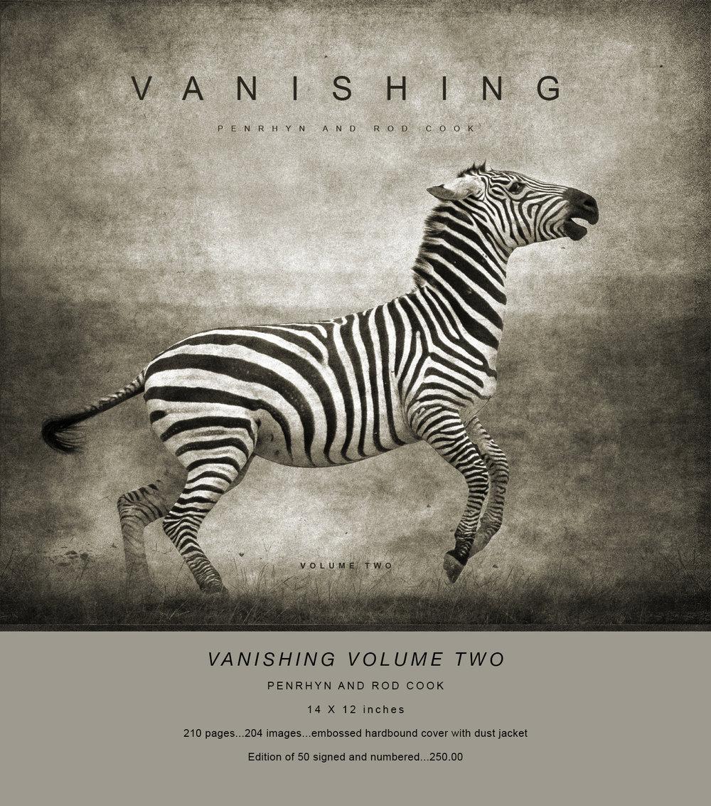 VANISHING vol 2 copy.jpg
