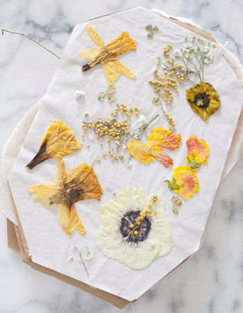 Weekly-Roundup-19-Design-Love-Fest-Pressed-Flowers-DIY-Tutorial.jpg