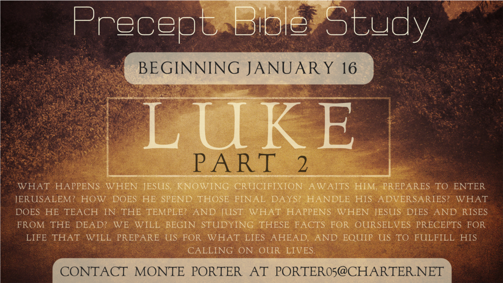 Precept Bible Study-LUKE.png