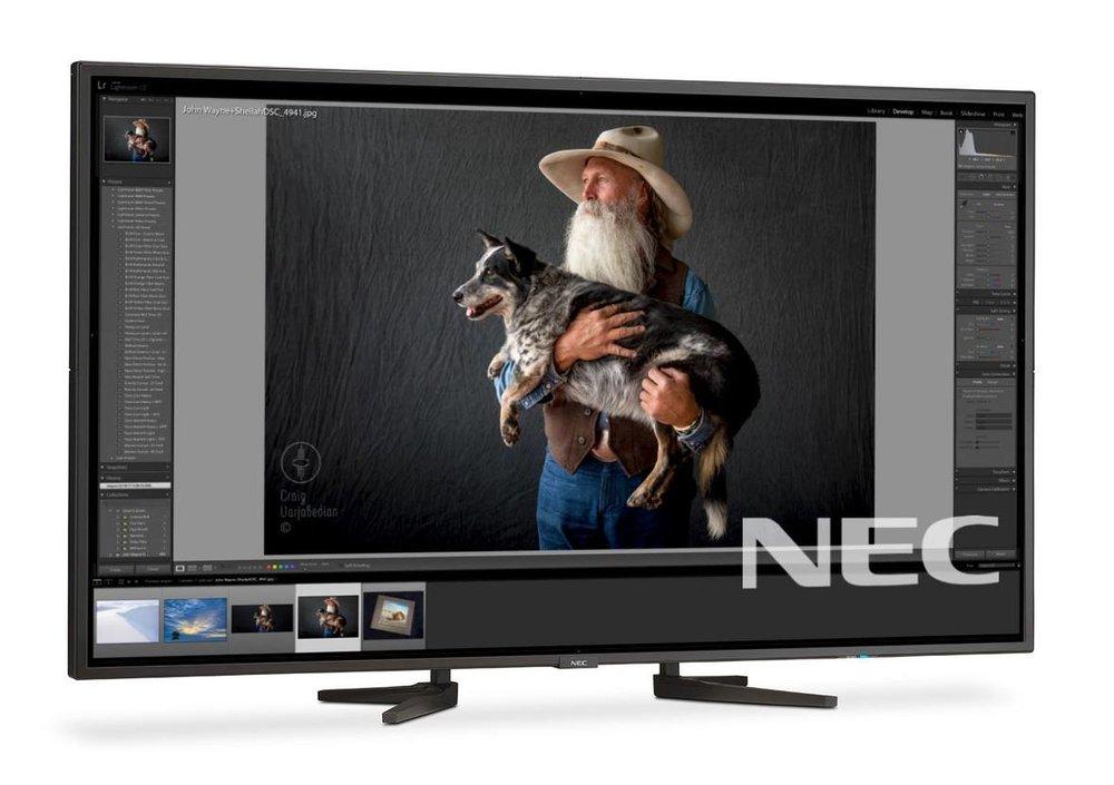 NECmonitor-johnw.jpg