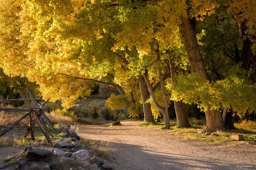 Golondrinas Fall Road_DSC6469 copy.jpg