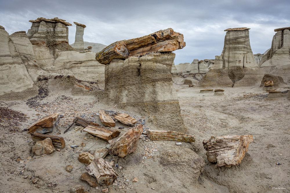 Bisti Rocks-Hardison.jpg