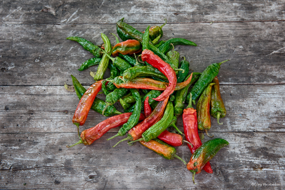 Red and Green Chiles.jpg