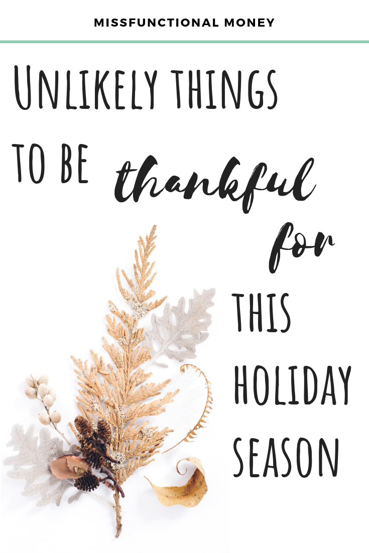 0d2e19db12ed2 Unlikely Things to Be Grateful For This Holiday Season ...