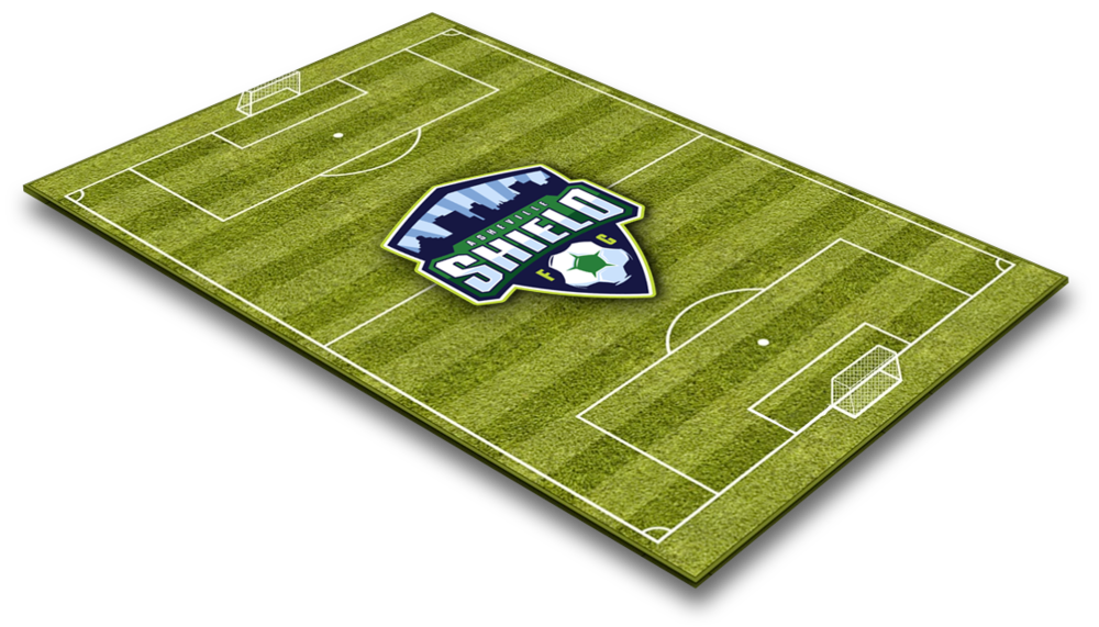 3D-soccer-field.png