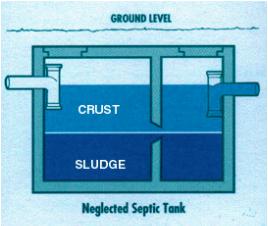 Septic Tank Bacteria.png