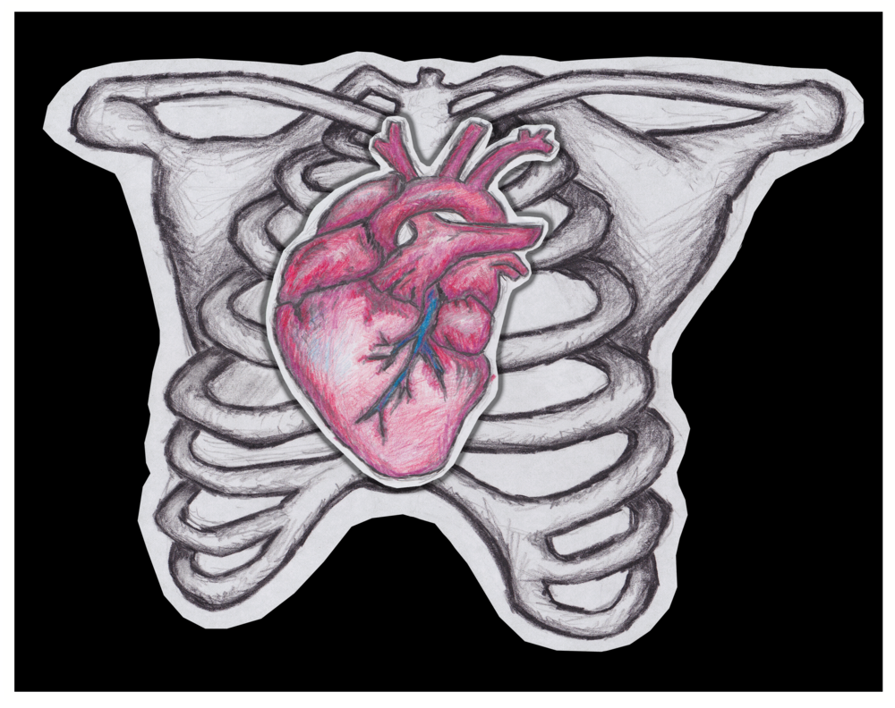 heartbonespic.png