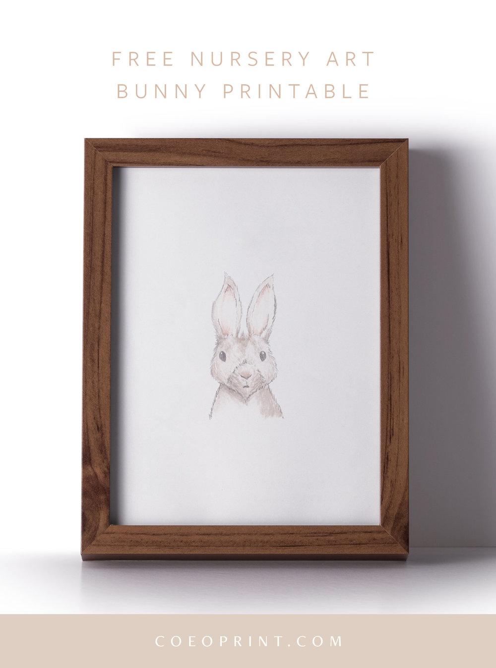 coeo-print-bunny-download-blog-4.jpg