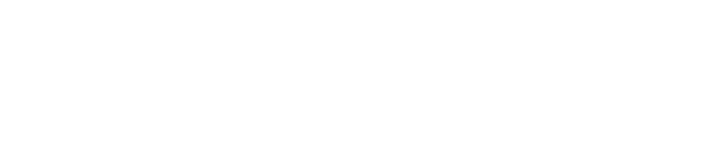 zoom-80.png