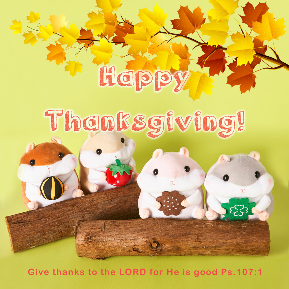 2017 Thanksgiving Greeting - Hamster Plush - DOWNLOAD
