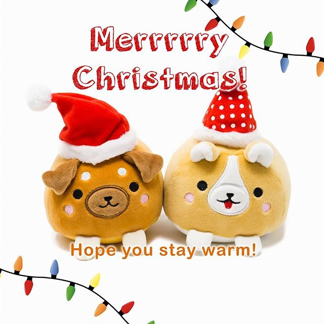 Merry Christmas! 🎁🎄 #toycup #dogs #merryxmas #merrychristmas #happyholidays #corgi #happy #friends #season #friends #plush #puppies #staywarm