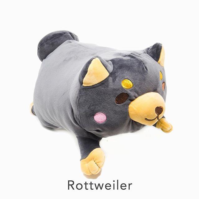 Shinjidai - Jumbo Dogs 🐶  #shinjidai #toycup #dog #puppy #plush #plushie #plushtoy #rottweiler #rottweilerpuppy #shiba #shibainu #shibalove #shibamania #corgi #corgisofinstagram #corgipuppy #boxer #boxerpuppy #husky #huskypuppy #huskylover #pug #pugsofinstagram #pugs #puggle #pugpuppy #puglife #pugnation #anime #stuffedanimals