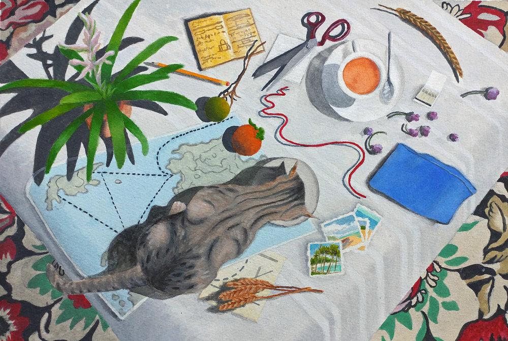 Planning Tortola.jpg