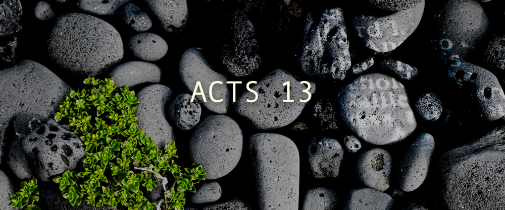 EXPERIENCE ACTS 13 - With so much sadness in the world, it is often hard to find hope.read more >