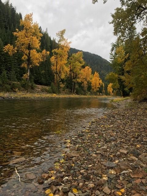 CDA river photo.jpg