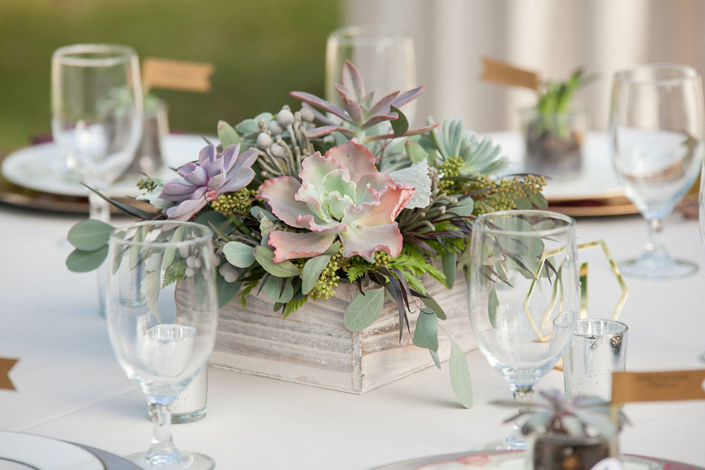 Bluegrass Chic - succulent centerpiece