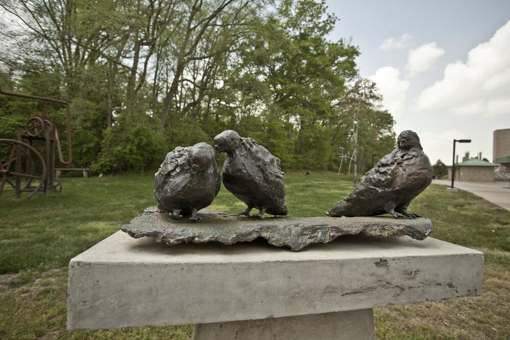 Pigeons (detail)