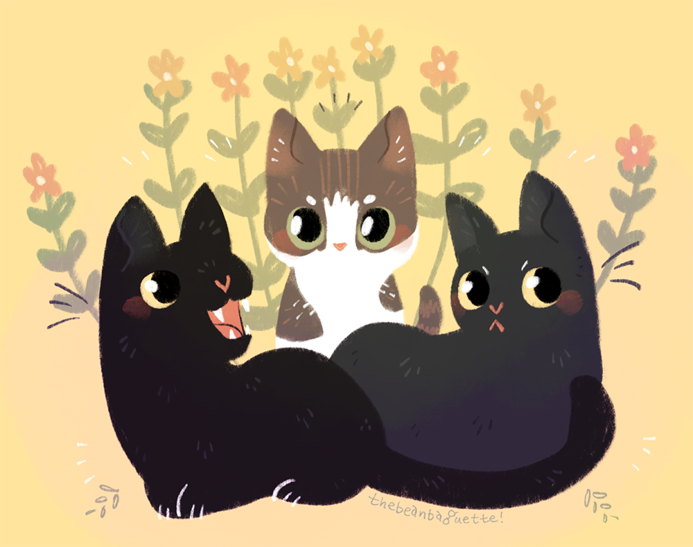 kitties
