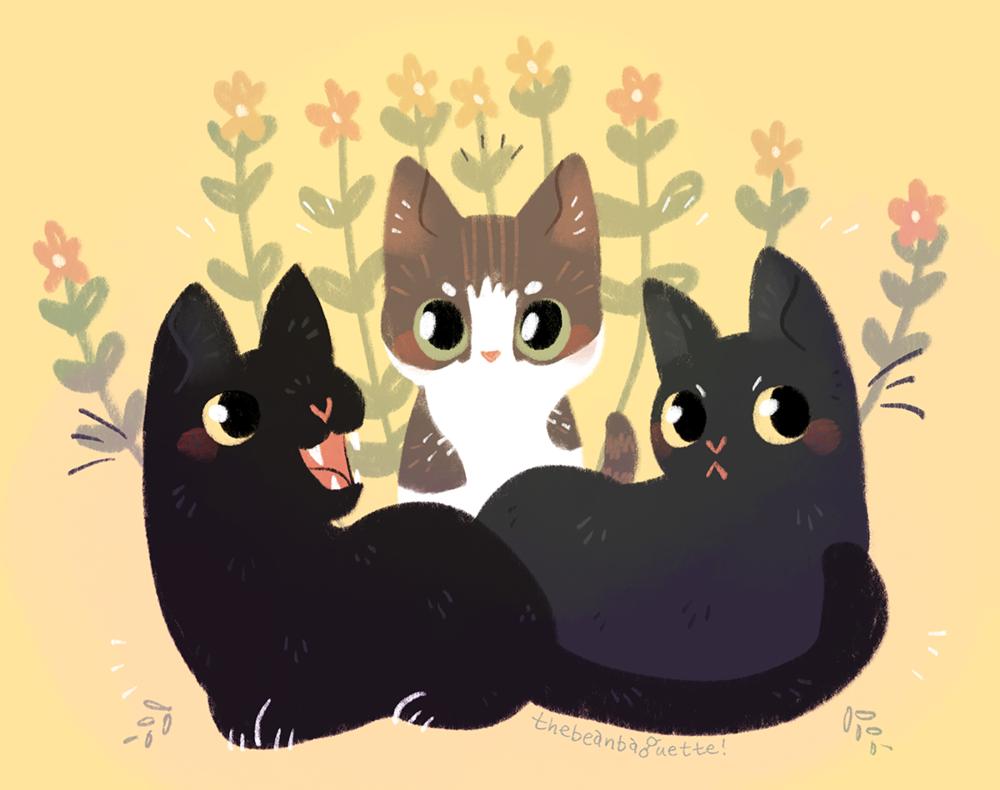 [basic, 3 pets]