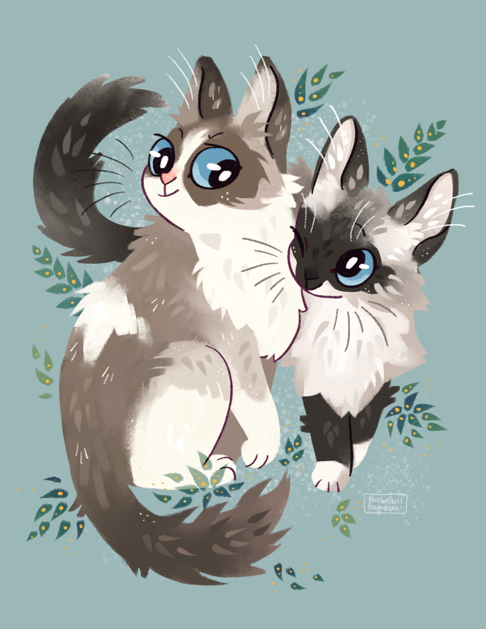 ragdoll cat portrait.png