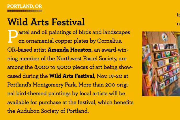 Wild arts festival - November, 2016