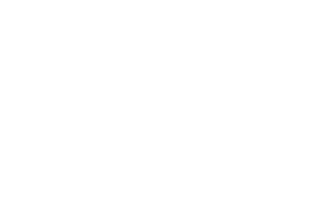 chartered accountant logo white-01.png