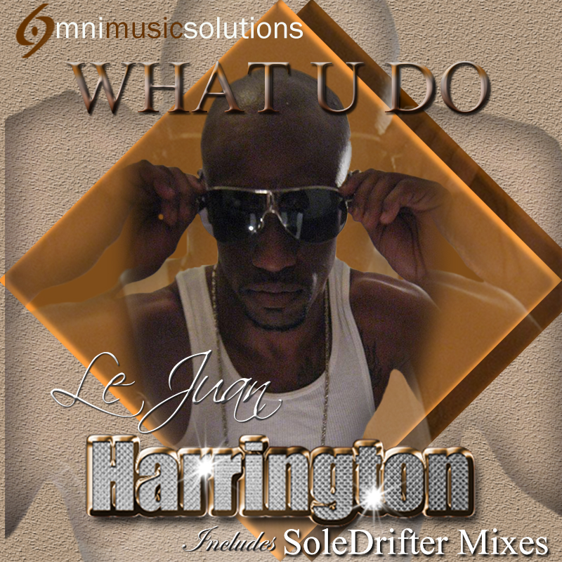 LeJaun Harrington - What U Do(SoleDrifter Mixes).jpg