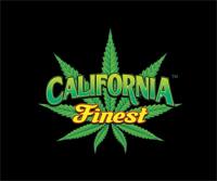 cafinest-logo.jpg
