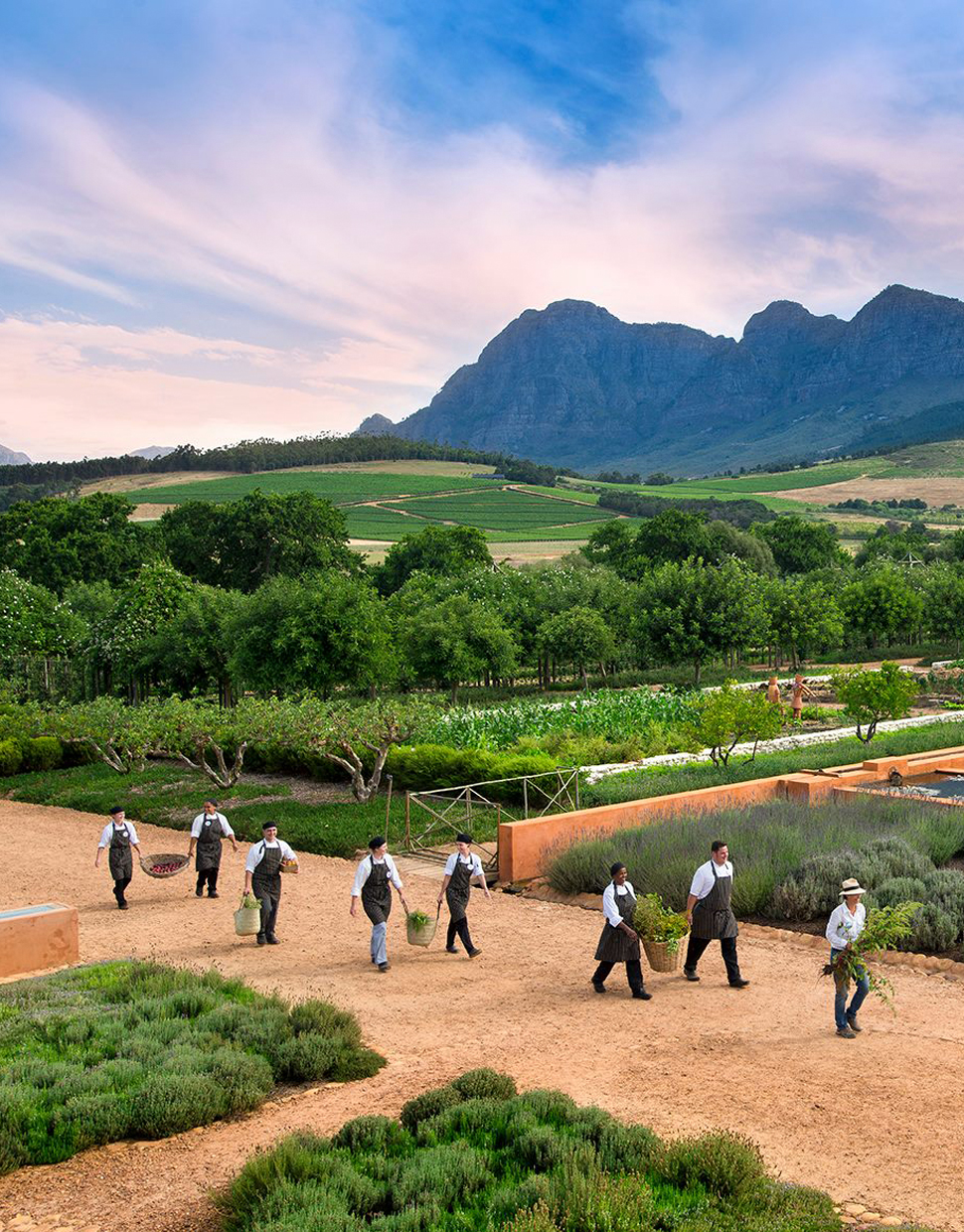 ULTIMATE-FOODIE-TOUR-IN-FRANSCHHOEK-.jpg