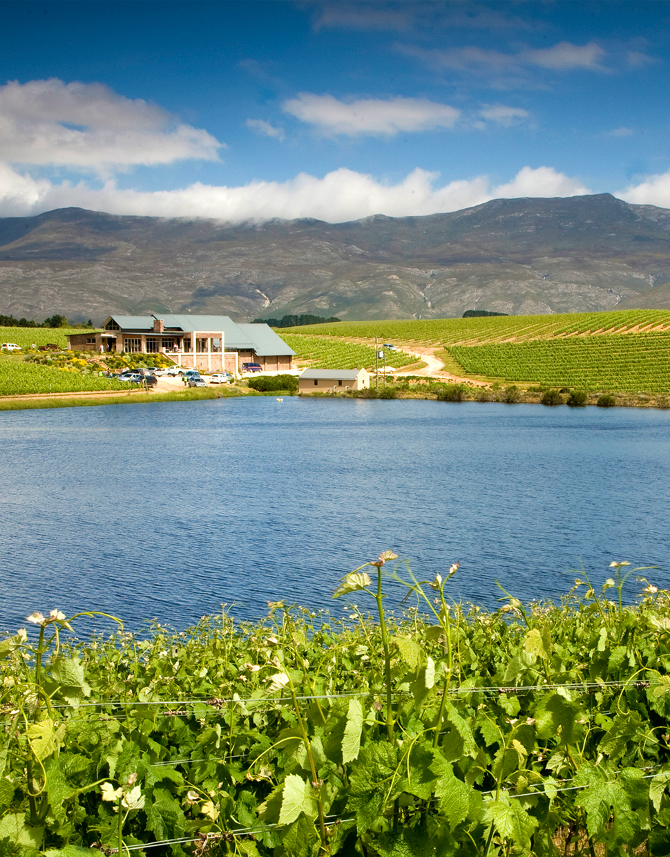 BEST-OF-HEMEL-EN-AARDE-COOL-CLIMATE-WINE-VALLEY.jpg